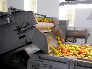 Линия по переработке и разливу фруктово-ягодного сока